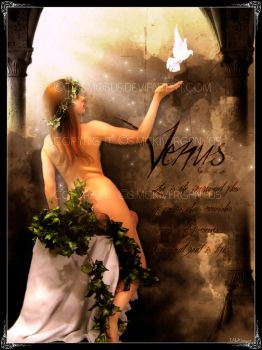 Venus - Goddess of Love by cosmosue