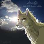 .: Some Kind of Wonderful :. by MorningAfterWolf
