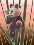 Pancham the Bamboo Bandit by Mewscaper