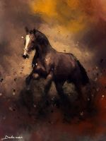 horse by Delawer-Omar