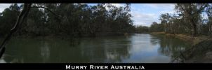 The Murry River by Dyer-Consequences
