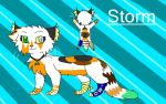 New Storm Ref by stormfire87