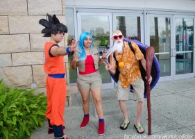 Reunion with Roshi and Bulma by worldcollider