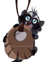 Baby Raccoon by KillerSandy