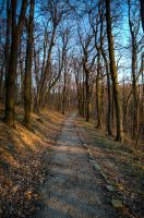 Path to the Avala Tower by aleexdee