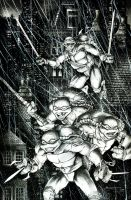 Teenage Mutant Ninja Turtles cover sample by Blasterkid