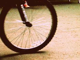 cycle by by Beckaphotos