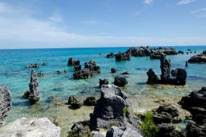 Bermuda 041 by FairieGoodMother