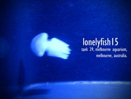 lonelyfish15 by paolo91