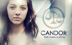 Free Divergent Wallpaper: Candor Faction by CherokeeLove