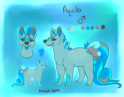 Aquilo Reference Sheet by Kama-ItaeteXIII
