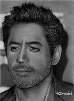 Robert Downey Jr. III by NLevaschuk
