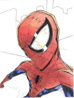 Spidey Distorted by Pencil-Fluke