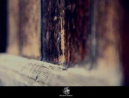 ahla_depth_ by 2a7la