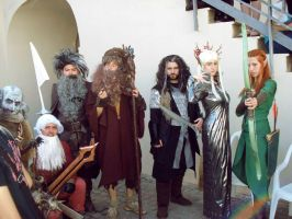 The Hobbit Cosplay II by ShinjiRHCP