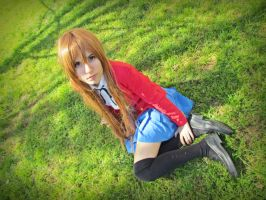 I wait for you (Taiga Aisaka, Toradora!) 03 by Doriri-chan