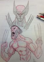 Wolvie doodles... by MikeVanOrden
