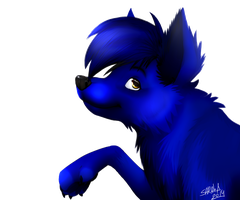 Blue Fox by SahGlam29