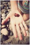 Baby Crab by FromSleepyHollow