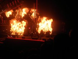 Through Fire and Flames by Shiinsan23