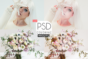 PSD Coloring 018 by vesaspring