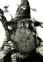 Gandalf by crayon2papier