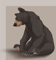 quick Black Bear by Nothofagus-obliqua