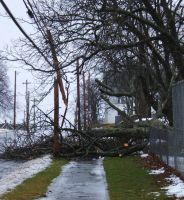 Storm of dec 22,08 two by Jadetiger