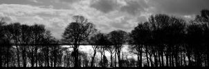 Ravenscraig Park by fourteenthstar