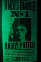 Harry potter wanted poster by Vimes-DA