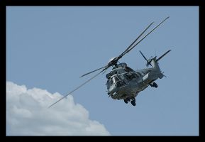 Super Puma by Hazadess