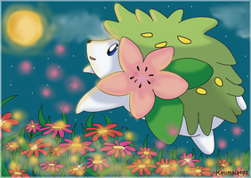 Shaymin at the night by Km92