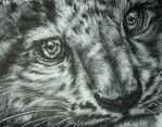 Contest Entry - Snow Leopard by That-One-Midget
