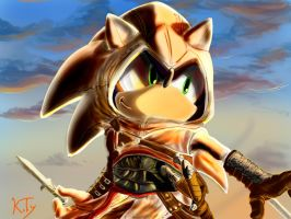 Sonic the assassin by KTy-cat
