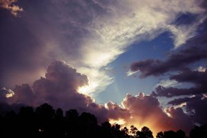 Trees,Clouds and Sun by Zsilenty