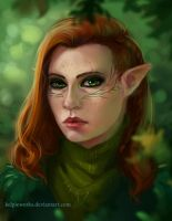 Inquisitor by Foleriel