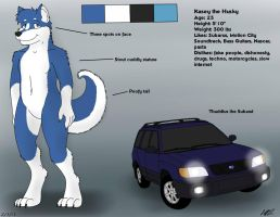 Kasey Reference Page by JeffTheHusky