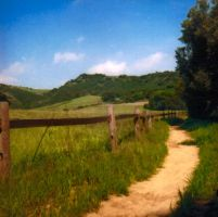 countryroadstock by avataria