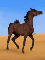 Arabian Desert by chronically