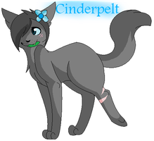Cinderpelt by Queen-Shira