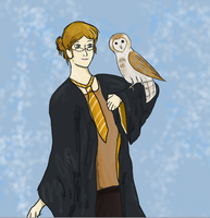 pottermore by byrch