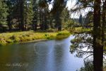 The Feather River III by Scooby777