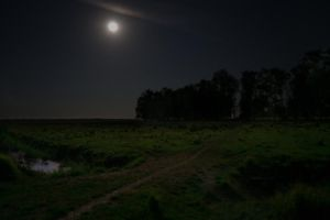 Full Moon over Denmark by martineriksen