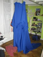 blue tunic with long tail in process II by Die-Rose