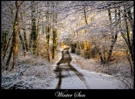 Winter Road 2 by calimer00