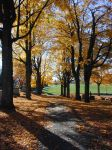 Fall at the Cemetery by JennyM-Pics