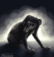 Sad puppy. by Safiru