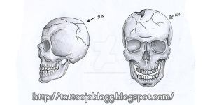 Skull from side and front by JOVictory