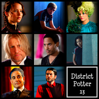 Awesome Collage Of Hunger Games Characters by DistrictPotter13