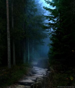 The Midnight Path by wyldraven